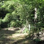 Habitat Area